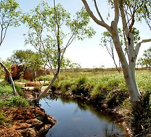 Devils Marbles Waterhole by Catherine C.  Turner