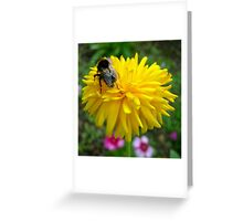Sunshine Days Greeting Card