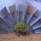 fan blades by Maryanne Lawrence