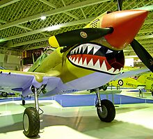 Curtiss Kittyhawk 1V - R.A.F. Museum - Hendon by Colin J Williams Photography