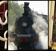 Ravenshoe Steam Train Trio by Caroline Angell