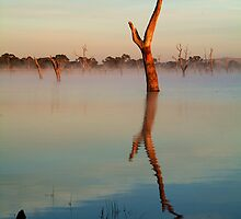 Lake Fyans by Joe Mortelliti