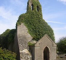 Church Ruins Wexford by clive woods