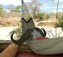 At rest in South Tanzania by Marieseyes