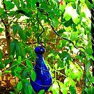 Colors of Amusement--Blue Glass 2 by sadeyedartist