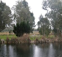 Peaceful Lakes With Lake Joondalup In The Far Distance. Wanneroo. by m004