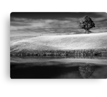 Absence of Fear Canvas Print