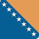 Bosnia & Herzegovina, national id by AravindTeki