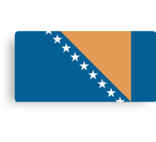 Bosnia & Herzegovina, national id Canvas Print