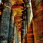 The Temple of Khnum by Roddy Atkinson