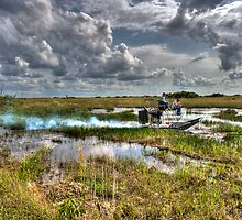 Surfing the FLorida Everglades by Gilbert Laraque