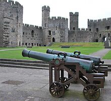 Old cannons at Caernarfon Castle  North Wales by 29Breizh33