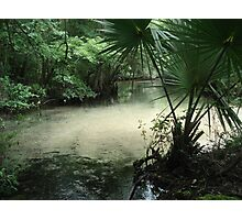 Outflow from the Beaverdam Photographic Print
