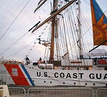 Tall Ships at Waterford City Harbour,Ireland 2005 [view larger]4 by Pat Duggan