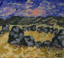 Stone Circle by Carolyn Cable