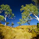 Ghost Gums, Central Australia by Kevin McGennan