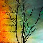 Dead Tree Standing. by Lynne Haselden