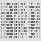 Binary by nickdaish
