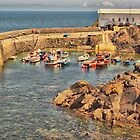 Coverack Harbour by Catherine Hamilton-Veal  ©