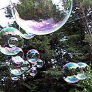 Bubbles by Len Bomba