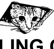 Ceiling Cat Sign Sticker