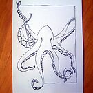 octopi. by loriotndorr