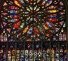 1984 Amiens Rose Window South Transept by Fred Mitchell