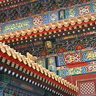 Colours of Asia by Lexx