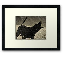 I'm Singing In The Rain Framed Print