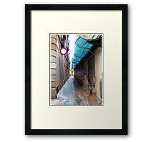 2007-03-10 [P1020720-P1020722 _GIMP] Framed Print