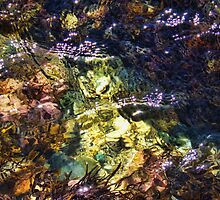 """Rock-Pool Abstract"" by debsphotos"