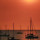 Darwin Sunset by Sue Jaeschke