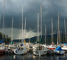 Safely Moored by Mike Oxley