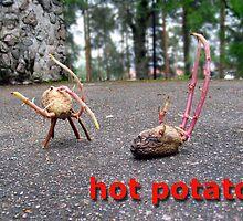 Lea Turto: hot potato 3 by Art  Works ry