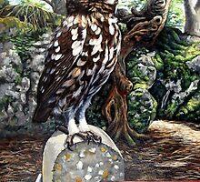 Little Owl by Robert David Gellion