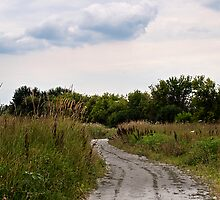 Prairie Path by Melonie Wallace