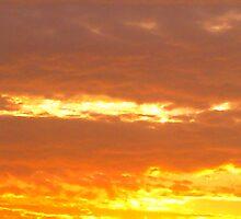 A Golden Sunset... by HansBellani