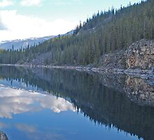 Lake Reflections by Mark Whittle