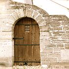 Old Door by Caren
