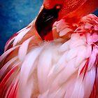 Flamingo #1 by Kiki7000