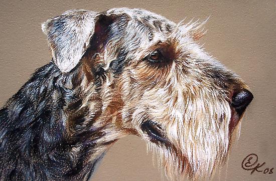 Airdale Terrier by Elena Kolotusha