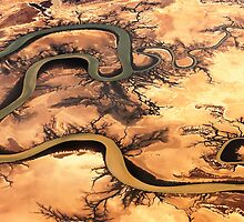 Carron River, Cape York Peninsula, Australia by Shannon Benson