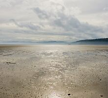 The Peace of the Mudflats by Anthony Davey