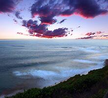 Long Reef Gem by tracyleephoto