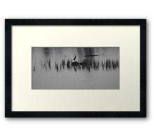 silhouette's of the swamp Framed Print