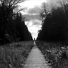 Lighthouse Path by ScottBittinger