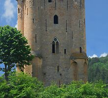 Chateau d'Arques by Peter Reid