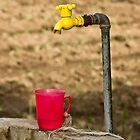 Red Cup Yellow Tap by Andre Roberts