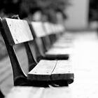 benches in the church by Yuriy Netesov
