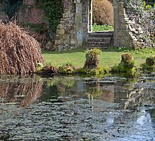 Scotney Castle grounds by Andrew  Marks